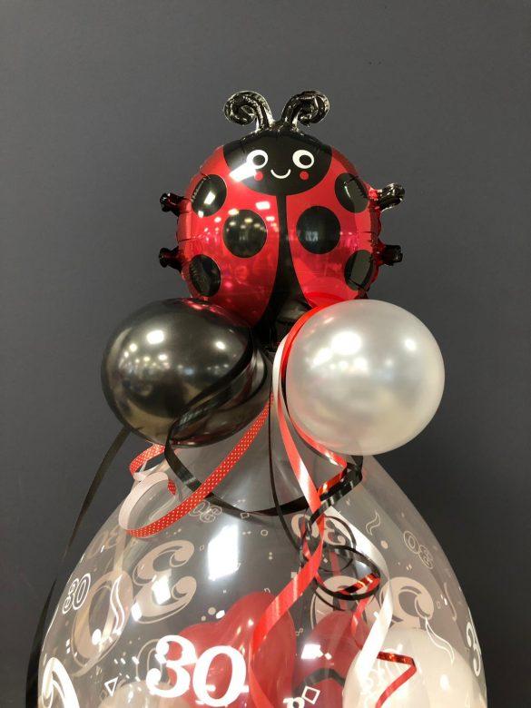 Ballongeschenk mit Glückkäfer € 14,90 15