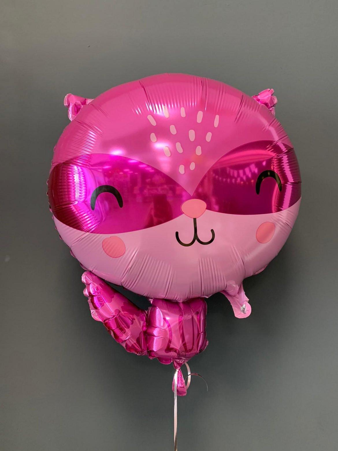 Rakoon Folienballon € 6,90 1