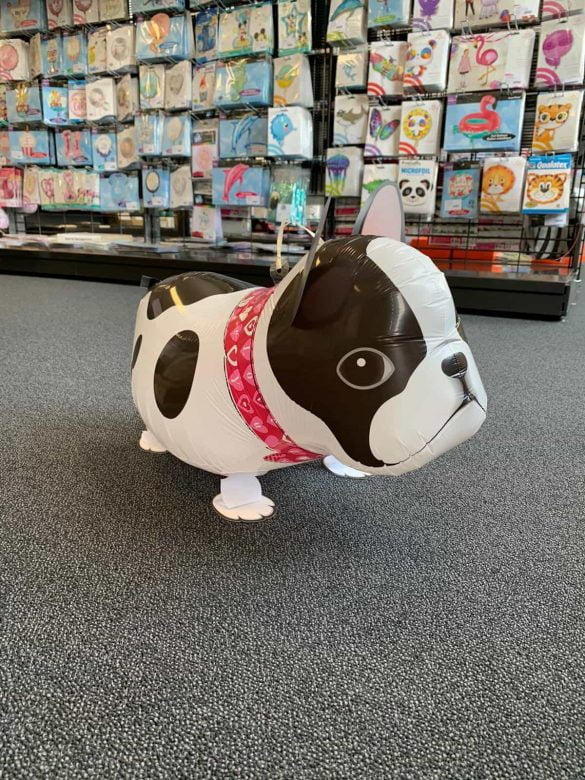Boston Terrier Ballon € 10 206