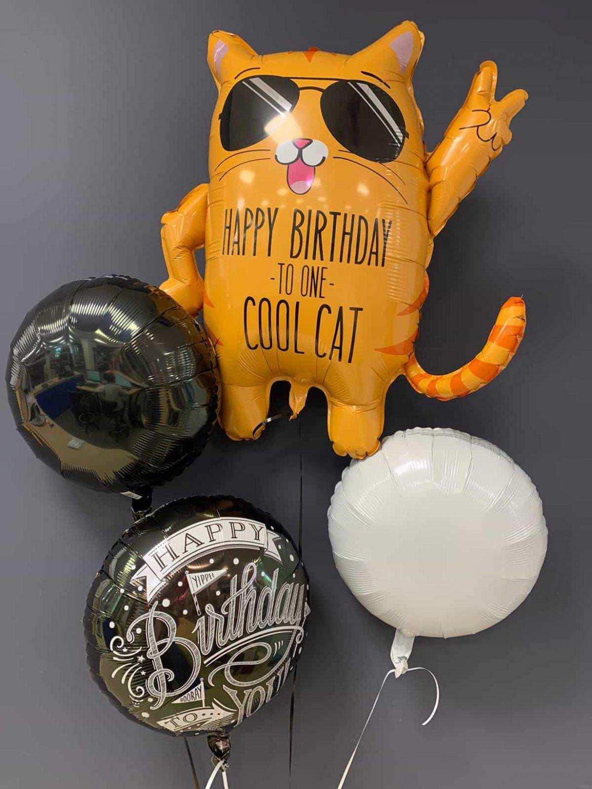 Cool Cat Ballon €7,90<br />Happy Birthday €5,50<br />Dekoballons €4,50 1