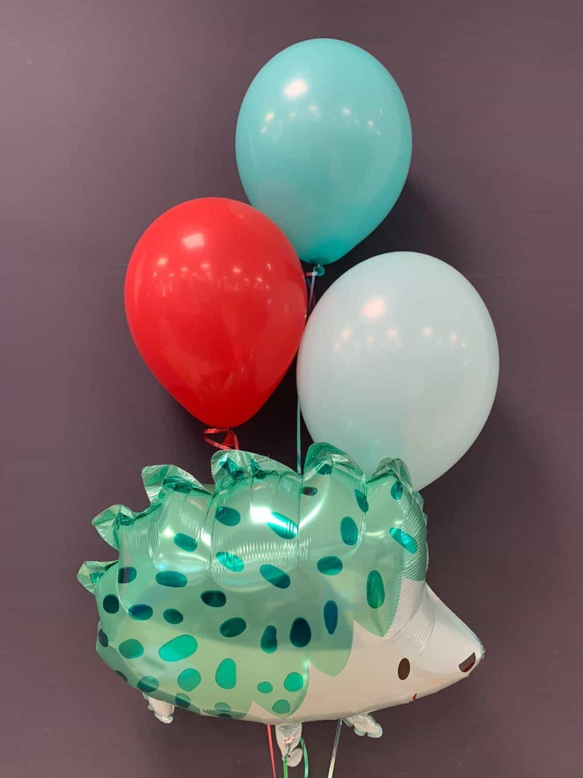 Ballon Igel € 5,90<br>mit Latexballons je € 1,95 1